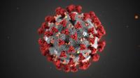Koronavírus: aktuálne možnosti pracovného života, balíček prvej pomoci